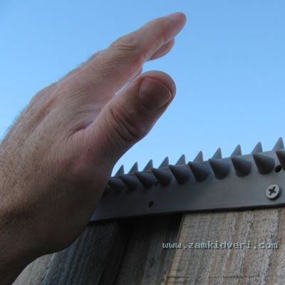Hands on Spikes Size